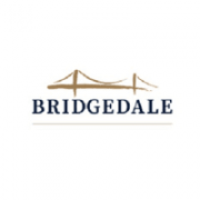 Bridgedale asset management